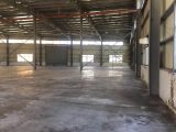 嘉善家具厂房出租12000平方全单层9米22含税含物业