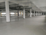 南湖区大桥工业园区紫宇路5000方厂房出租