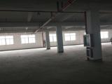 滨海工业区10000方厂房出租