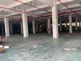 滨海滨海新天地商业中心20000方厂房出租