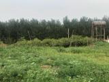 顺义区杨镇工业区东100米20000方土地出租