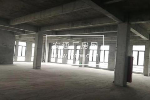 金山桥开发区高铁站附近55000方厂房出售
