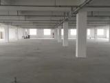 苍南龙港仪邦工业园区-A2幢1500方厂房出租