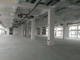 雨山九华西路1369号青年电子产业园1580方厂房出租