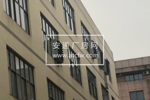 苍南涌金路8号3000方厂房出租