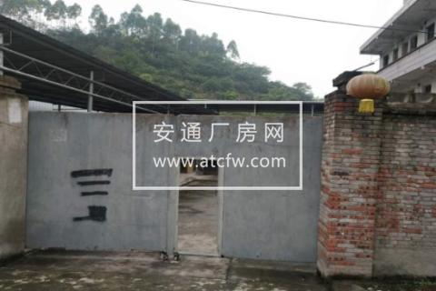 九龙坡铜罐驿镇观音桥村1200方厂房出租