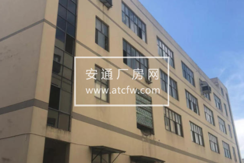 苍南灵溪镇1600方厂房出租
