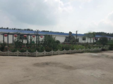 埇桥区支河乡55888方土地出租