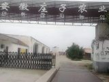 蒙城县5000平米厂房出租