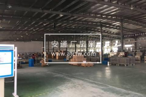 出租:沥海底层5000方钢结构厂房
