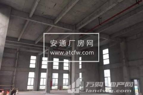 出售 标准厂房 首层8.1米 双证齐全 50年产权 黄金地段 价格低 面积全