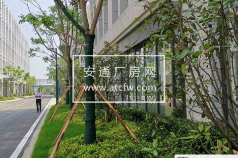 苏州唯一在售1、2层 首层7.2米 高架旁 生产型厂房 工业用地 2层承重一吨 照片实拍 稀缺!稀缺!