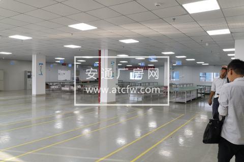 厂房招租广告  【招租面积大单层2400㎡ ,宽柱距 8m*10m ,高4m,承重 350-500kg/m2,带前后电梯