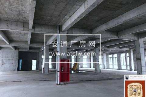 非中介!吴中全新厂房出租 高架旁 生产型厂房 工业用地  照片实拍 稀缺!稀缺!