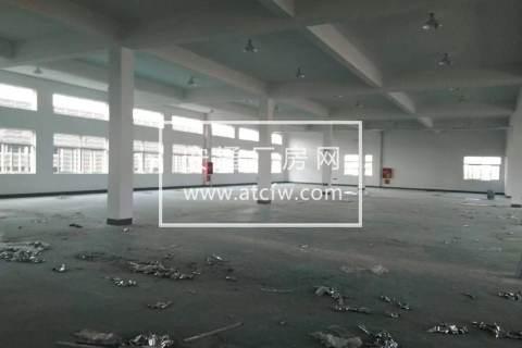 嘉兴市南湖区八万平高标仓库出租可分租