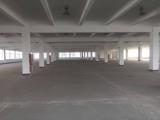 出租:滨海25000平方厂房