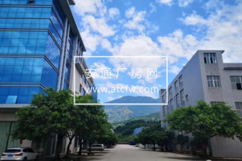 乔司工业区独栋厂房4600方出售,多层框架混凝土结构