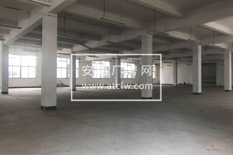 绍兴皋埠16700方厂房出售