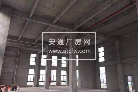出售地铁口8.1米标准厂房 园区直招 独立产权 面积多选