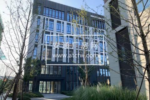 松江11万平厂房原房东直租 层高7.2米 104地块 有产证 适合医疗器械金属设备 价格可谈