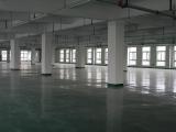 2500平标准化厂房,交通便利,可通大车,1-6层