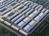 出售 新建厂房 50年独立产证 单层钢结构和双层框架结构厂房