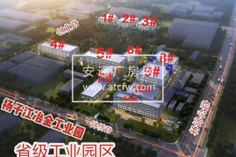 政府园区全新厂房直租 1000-8000㎡ 可分租 价格低
