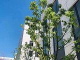 (出售)义乌后宅园区层高7.2米,小面积,独立产权,一户一证,首开优惠