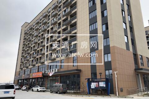独门独院 轻钢结构定制厂房 一楼层高10米