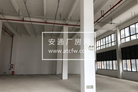 一层挑高10米 3加1轻钢厂房 独门独院可定制 拎设备入驻