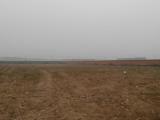 出售:绍兴市上虞区杭州湾300亩二类工业用地