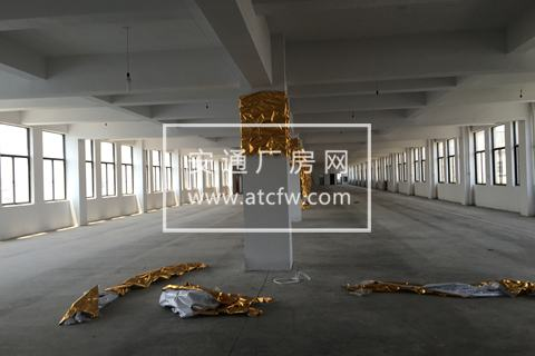 出租余杭塘栖出租3-5楼共3900方标准厂房