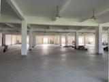 出租:绍兴市上虞区东关镇5400方整栋标准厂房