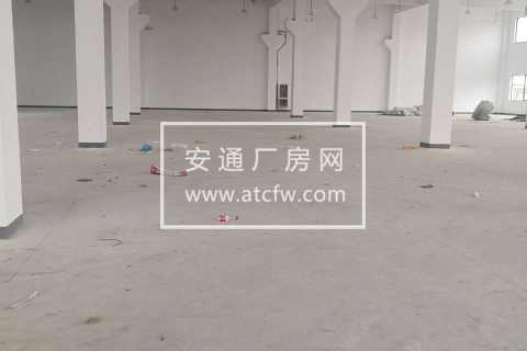 澥浦6000平1-3楼厂房