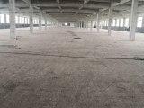 镇海骆驼工业区12000平高12米厂房出租