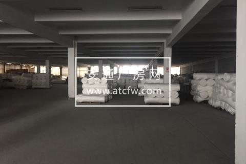 出租:滨海楼上3000方标准厂房