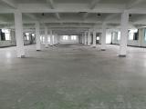 出租:皋埠四楼1900方标准厂房