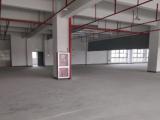 (出租) 平湖嘉善交界 厂房 1500平米独院全新厂房