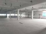 嘉善惠民街道独院8700平方厂房出租